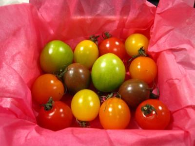 可愛いトマト